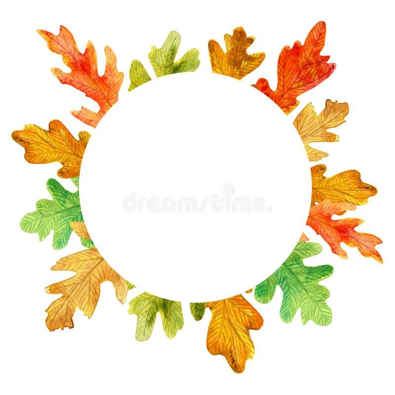 De eiken bladeren van de waterverfherfst Cirkelkader op witte achtergrond royalty-vrije illustratie