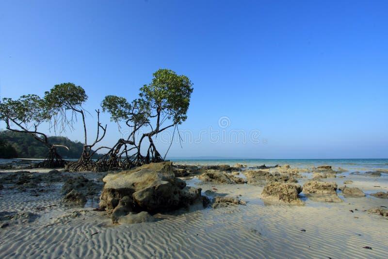 De Eilanden van Andaman India stock foto