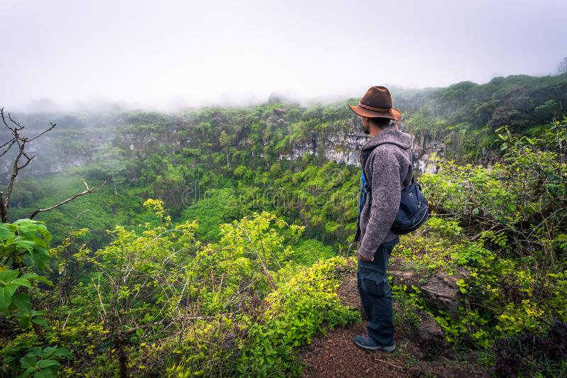 De Eilanden van de Galapagos - 22 Juli, 2017: Vulkanische krater van Santa Cruz Island royalty-vrije stock fotografie