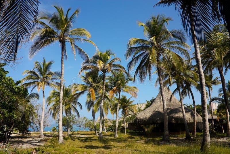 De eilanden van Rosario. De Caraïben, Colombia royalty-vrije stock afbeelding