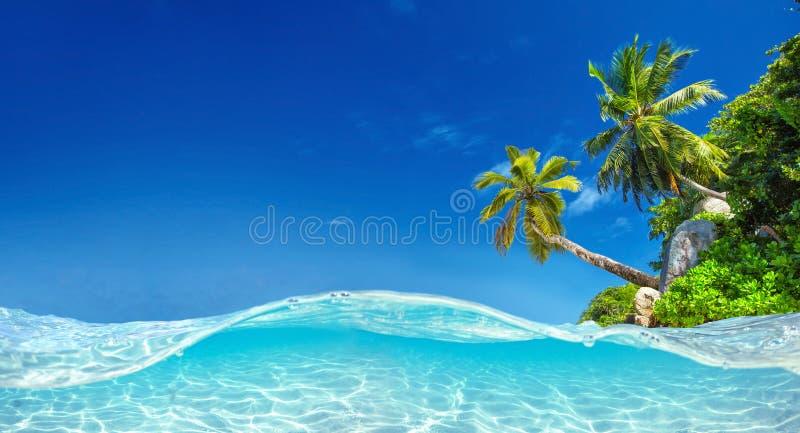 De eilanden van Seychellen Palm Beach in Tropisch Paradijs royalty-vrije stock afbeeldingen