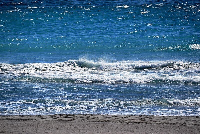 De eilandgolven brengen een kleurrijke vibe aan Boca Raton Beach royalty-vrije stock afbeelding
