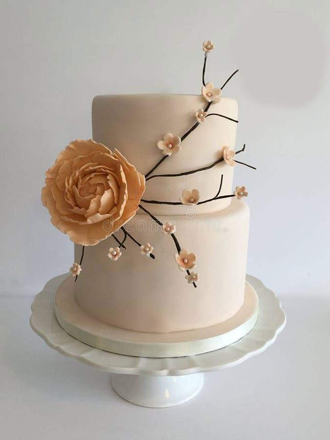 De elegante Cake van het Huwelijk stock fotografie
