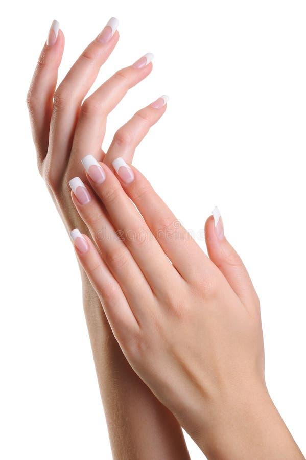 De elegante vrouwelijke handen van de schoonheid met Franse manicure royalty-vrije stock foto