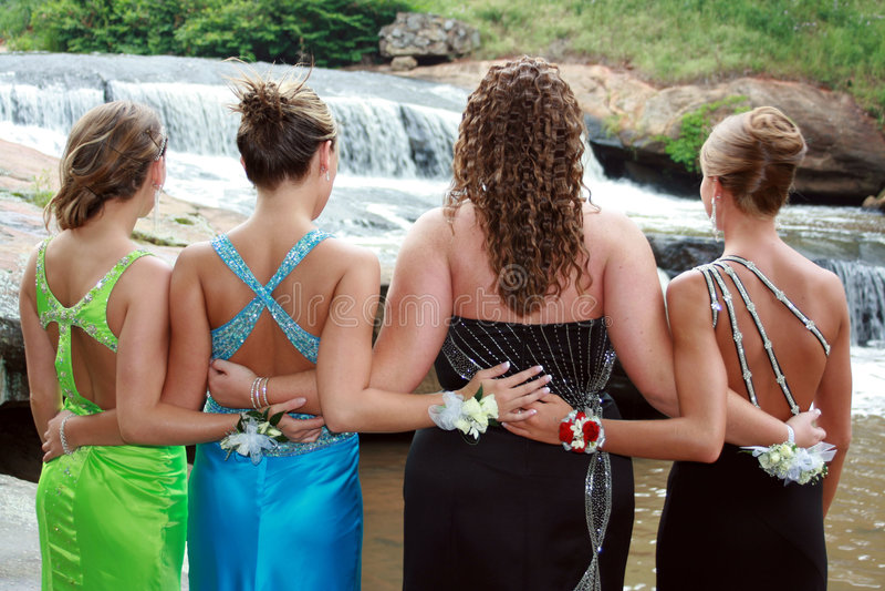 De Elegantie van Prom stock afbeelding