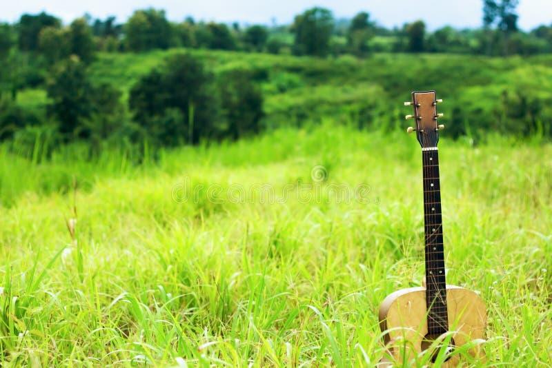 De elektrische gitaren gezet op een groene berg, Lijn 1 is gegaan royalty-vrije stock foto's