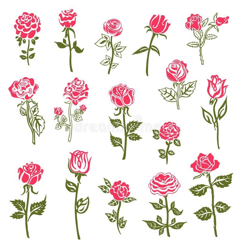 De elementen van het rozenontwerp vector illustratie