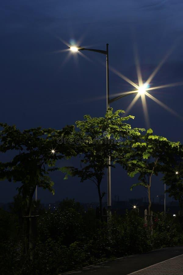 De energy-saving straatlantaarns door leiden worden gemaakt die stock foto's