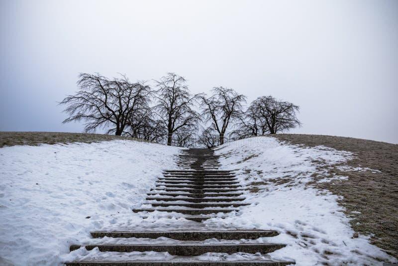 22 de enero de 2017: Escalera a un punto de vista de Skogskyrkogarden adentro fotos de archivo