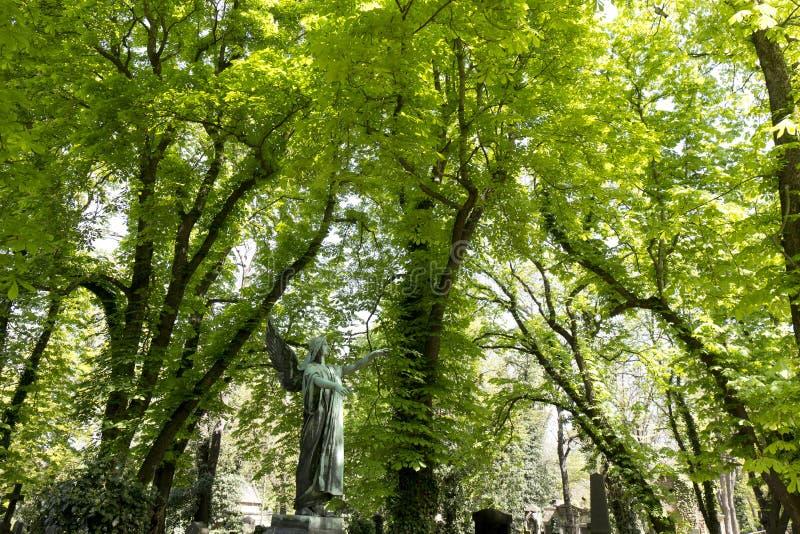 De Engel van de de lentegeheimzinnigheid oude Begraafplaats van Praag, Tsjechische Republiek stock foto's