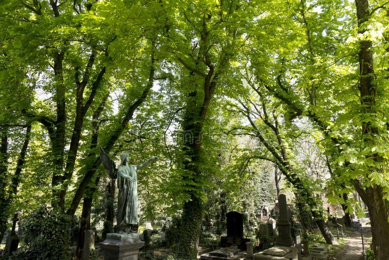 De Engel van de de lentegeheimzinnigheid oude Begraafplaats van Praag, Tsjechische Republiek stock afbeelding