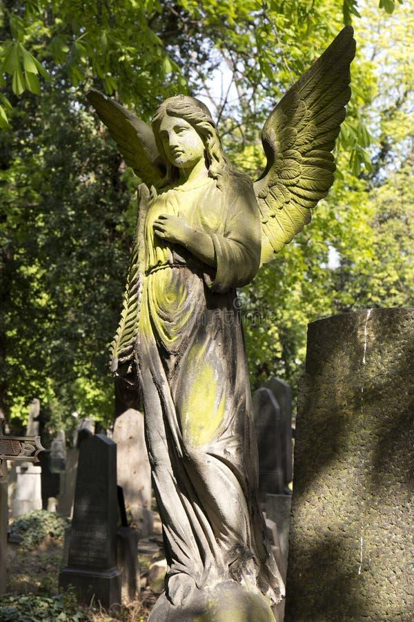 De Engel van de de lentegeheimzinnigheid oude Begraafplaats van Praag, Tsjechische Republiek royalty-vrije stock afbeeldingen