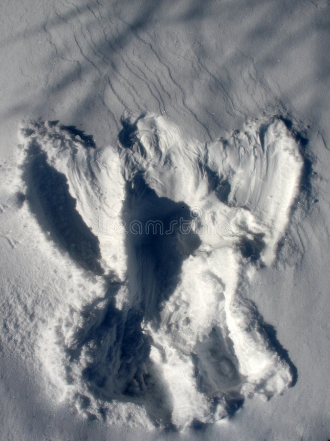 De Engel van de sneeuw royalty-vrije stock fotografie