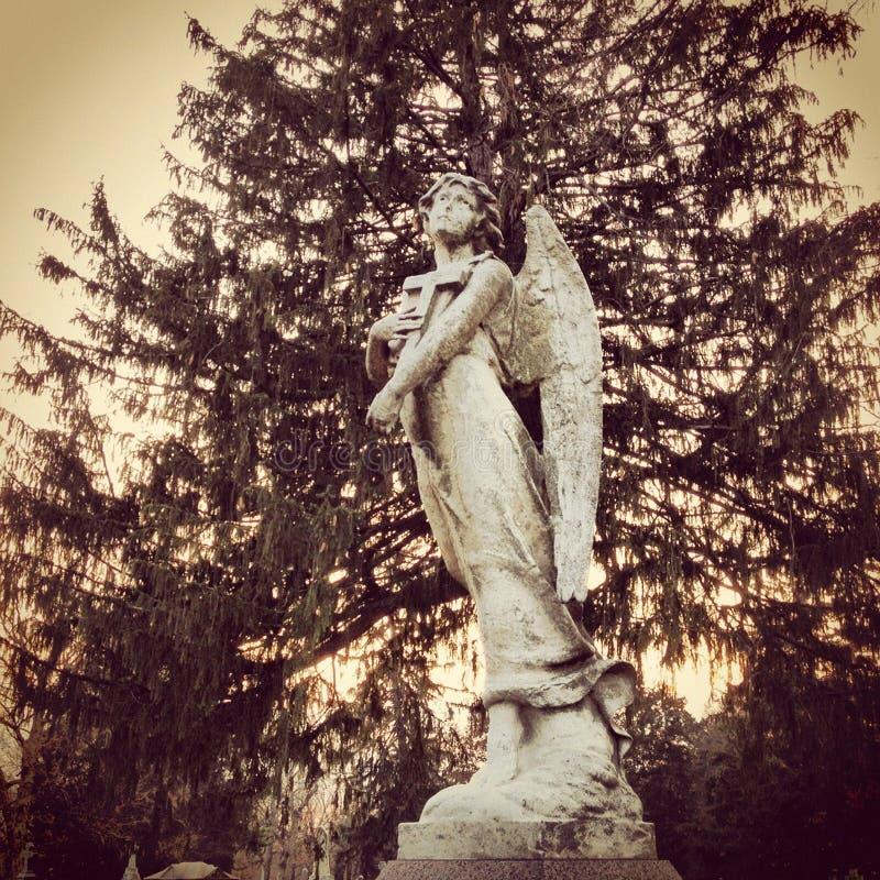 Download De Engel van het kerkhof stock foto. Afbeelding bestaande uit begraafplaats - 29513574