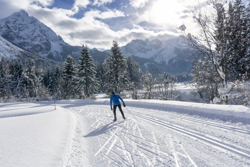 De enige dwarsskiër van het land op verzorgd skispoor royalty-vrije stock fotografie