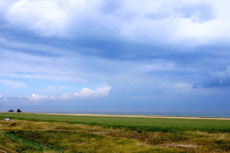 De enorme weide onder de blauwe hemel stock afbeelding