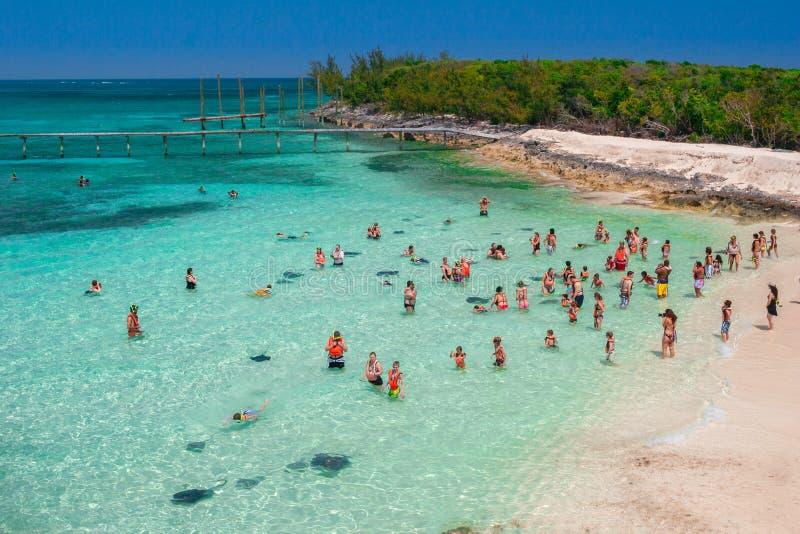 De ervaring van de toeristenpijlstaartrog in de Bahamas stock fotografie