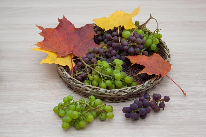 De esdoorn doorbladert en rijpe die druiven op een houten achtergrond worden geïsoleerd Het stilleven van de herfst royalty-vrije stock afbeelding