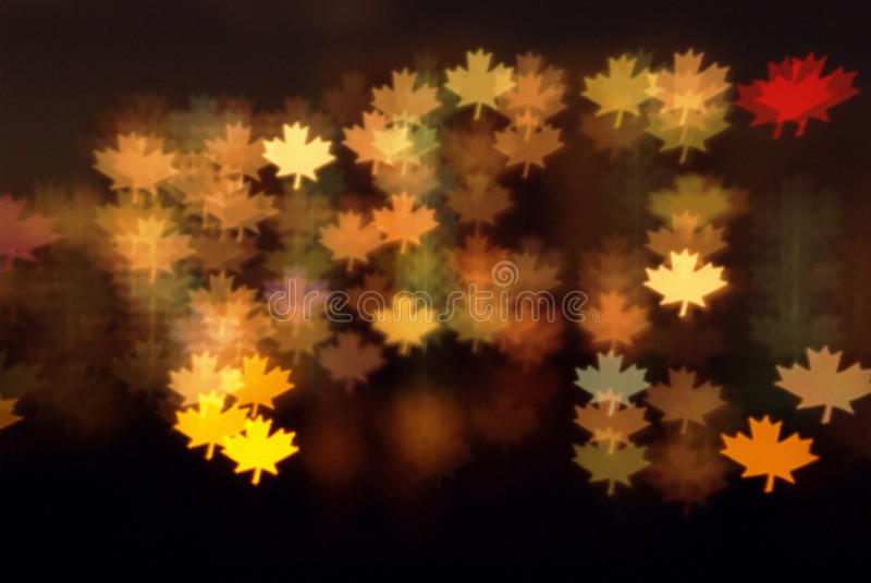 De esdoorn doorbladert lichtenachtergrond stock fotografie