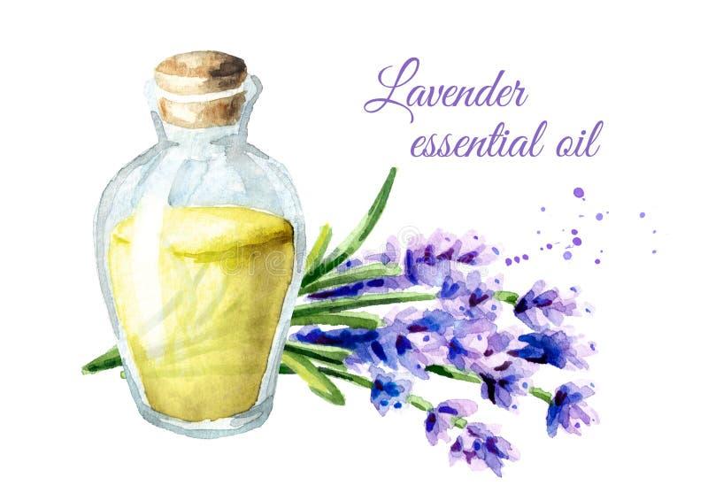 De essentiële olie van de lavendel Waterverfhand getrokken die illustratie, op witte achtergrond wordt geïsoleerd royalty-vrije illustratie