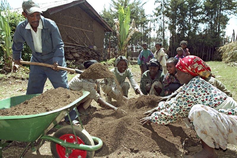 De Ethiopische mensen werken in herbebossingsproject stock foto