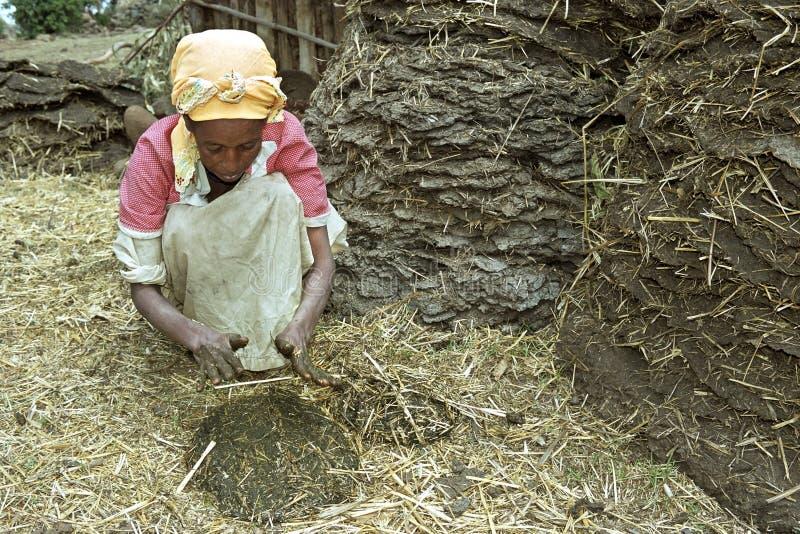 De Ethiopische vrouw maakt van de brandstofschijven van de koemest stock afbeelding