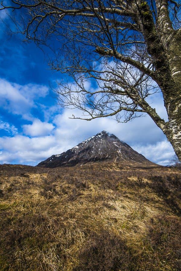 De Etive-Herder: De mooie piramidale piek van Buachaille Etive Mor in de Hooglanden van Schotland stock foto