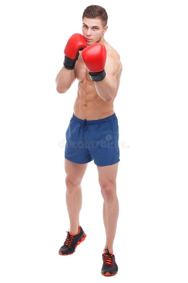De Europese bokser, met bokshandschoenen, stakingen Geïsoleerde royalty-vrije stock foto