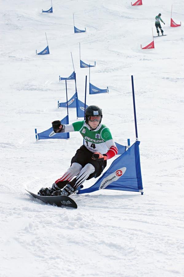 De Europese Kop van Snowboard royalty-vrije stock foto's