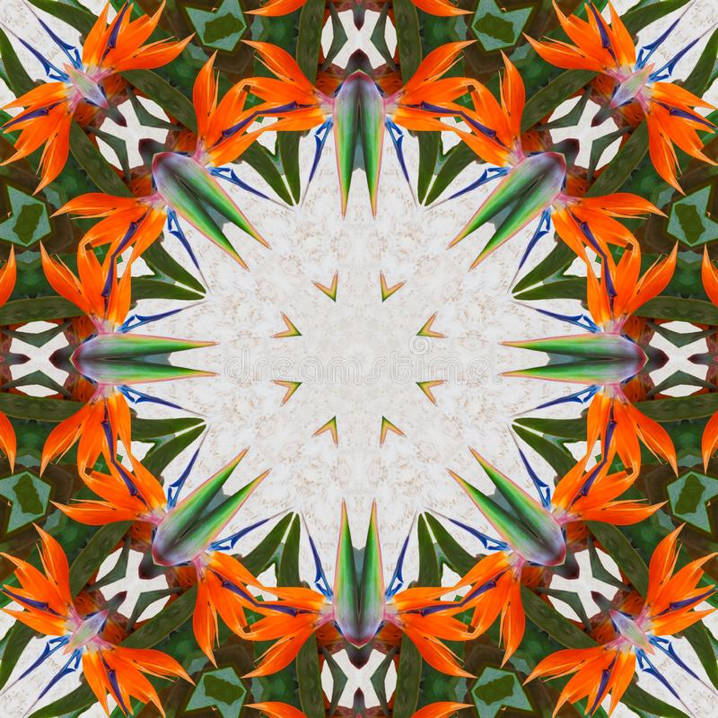 De exotische caleidoscoop van het bloem abstracte patroon royalty-vrije illustratie