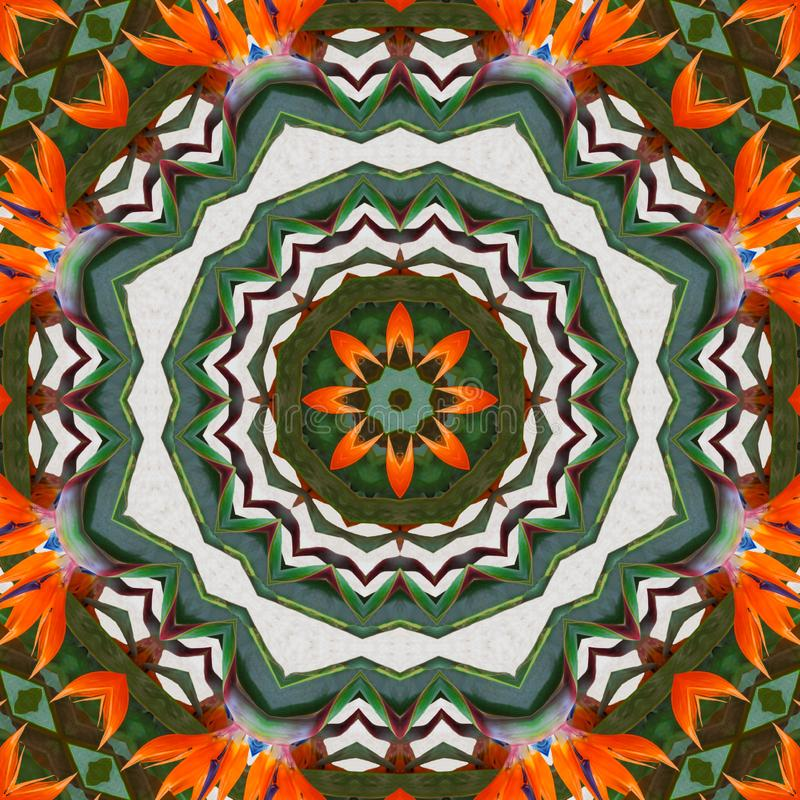 De exotische caleidoscoop van het bloem abstracte patroon stock illustratie