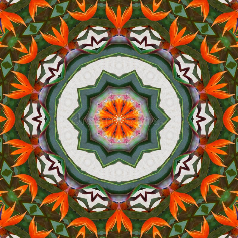 De exotische caleidoscoop van het bloem abstracte patroon vector illustratie