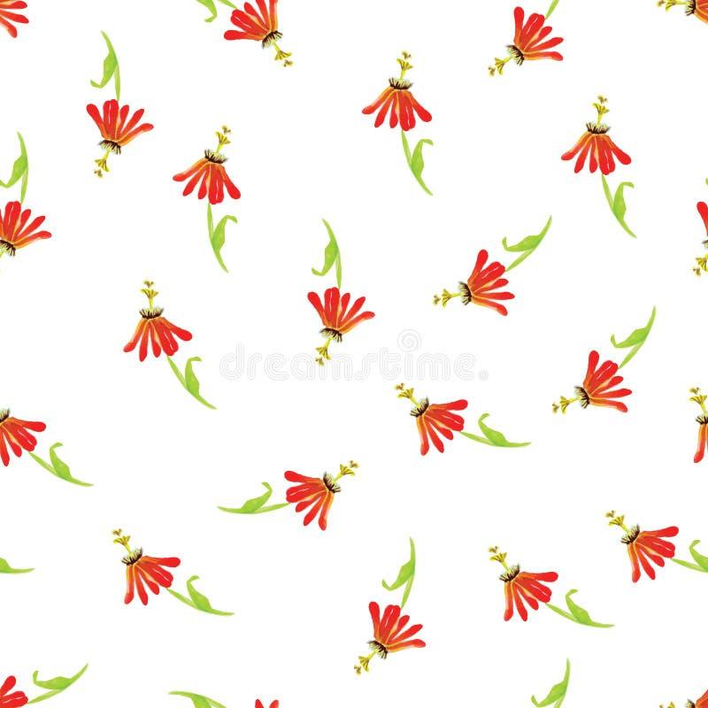 De exotische rode naadloze vectordruk van de bloemenwaterverf royalty-vrije illustratie