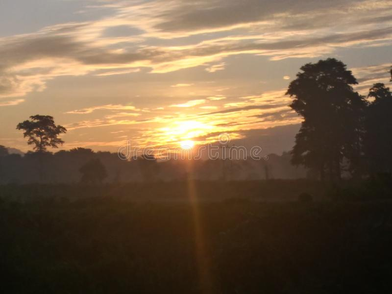De första ljusen för morgontid royaltyfri bild