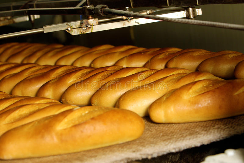 De fabriek van het brood, lopende band stock foto