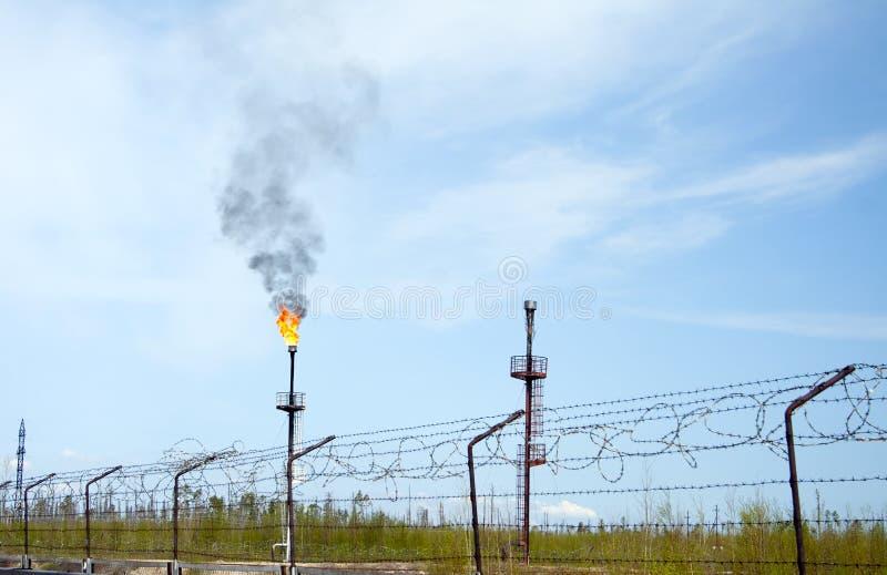 De fabriek van het chemische product en van de olie De toorts van het gas stock foto