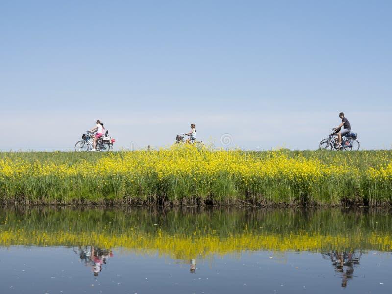De familie berijdt fiets langs water van valleikanaal dichtbijgelegen leusden in Nederland en de passen gele bloeiende bloemen va royalty-vrije stock afbeelding