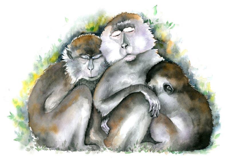 De familie van de aap Drie bruine monkies die samen met gesloten ogen zitten De illustratie van de waterverf stock illustratie