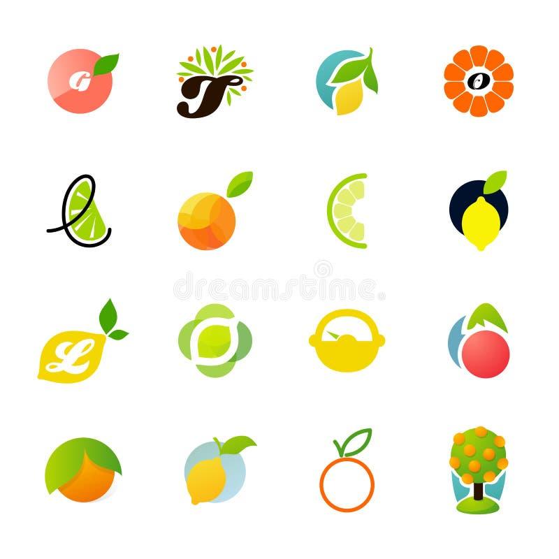 De familie van de citrusvrucht - citroen, sinaasappel, kalk, mandarijn stock illustratie