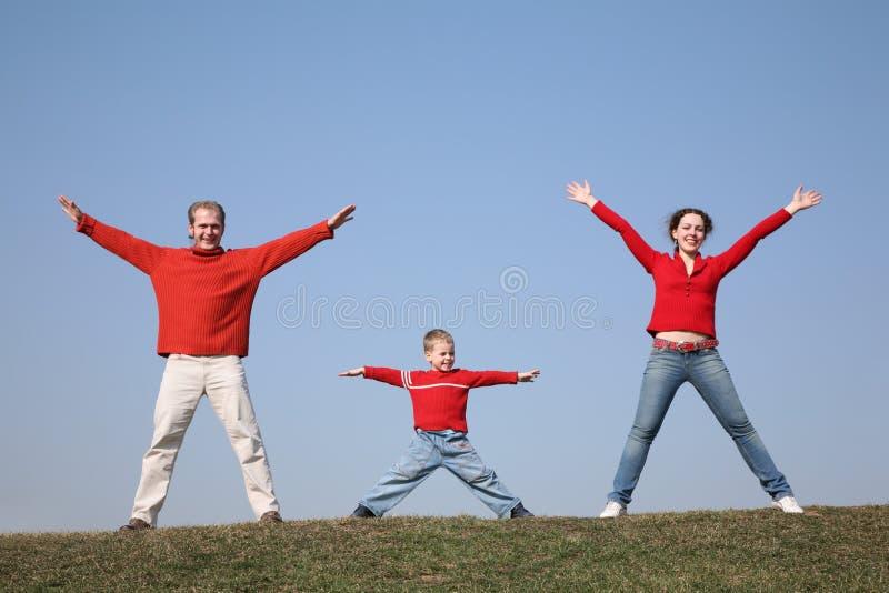 De familie van de gymnastiek op weide 2 stock foto's