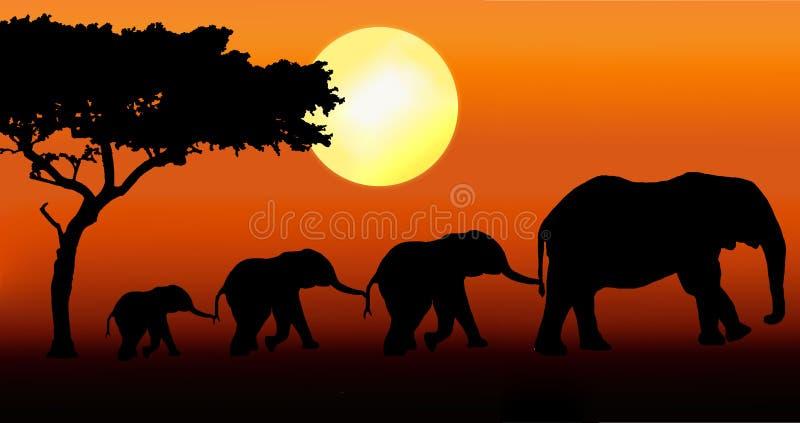 De familie van de olifant het lopen