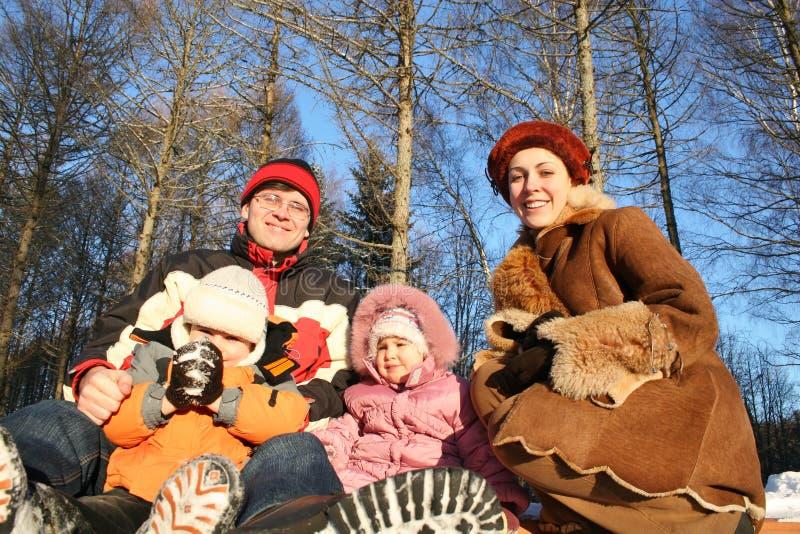 De familie van de winter royalty-vrije stock afbeelding