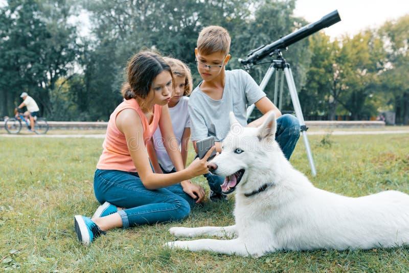 De familie van drie kinderen loopt in het park met witte Schor hond, zittend op het gazon, die pret hebben bekijkend mobiele tele royalty-vrije stock foto's