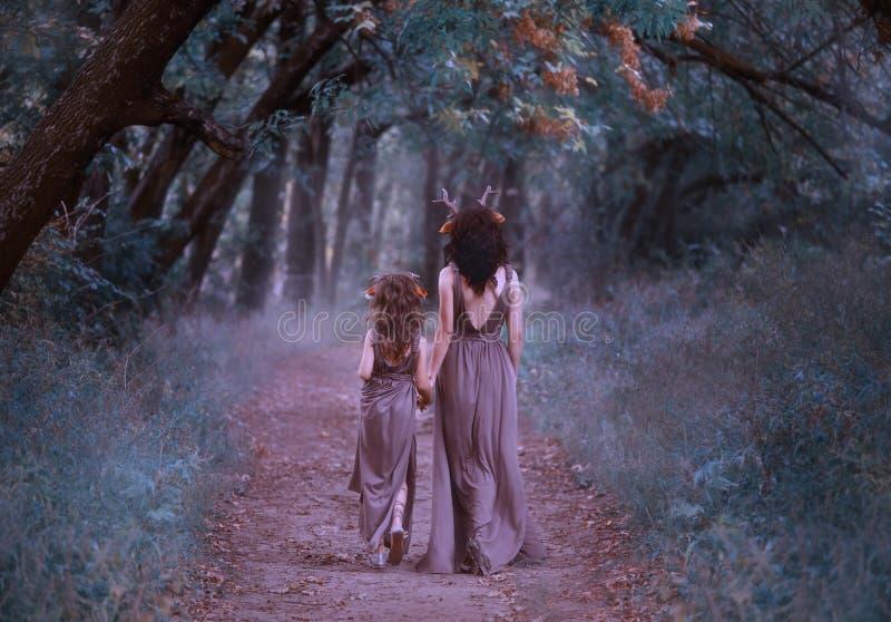 De familie van herten loopt in het bos, binnen lopen de de faunsmoeder en dochter langs een geheimzinnige weg aan het bos stock fotografie
