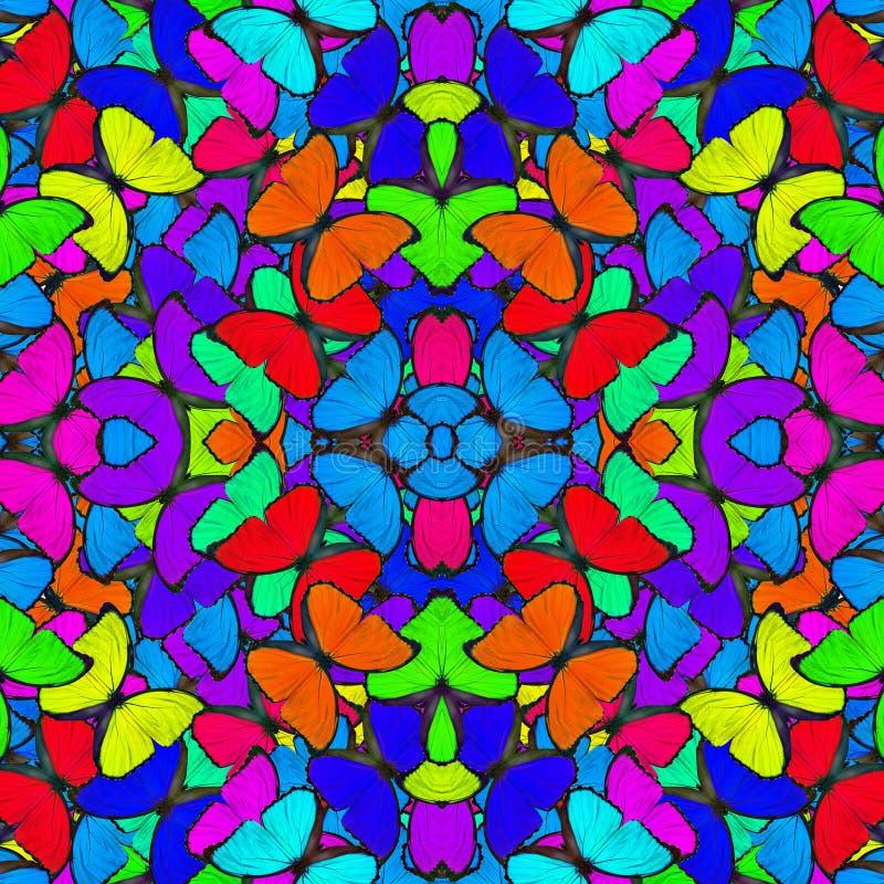 De fasinating kleurrijke die achtergrond van Blauwe Morpho-butterfli wordt gemaakt royalty-vrije stock afbeeldingen