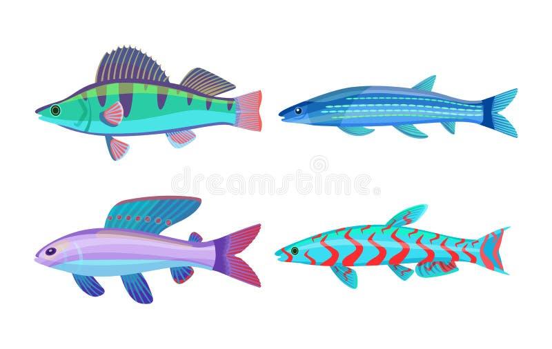 De Fauna Vastgestelde Vectorillustratie van makreel Blauwe Vissen vector illustratie