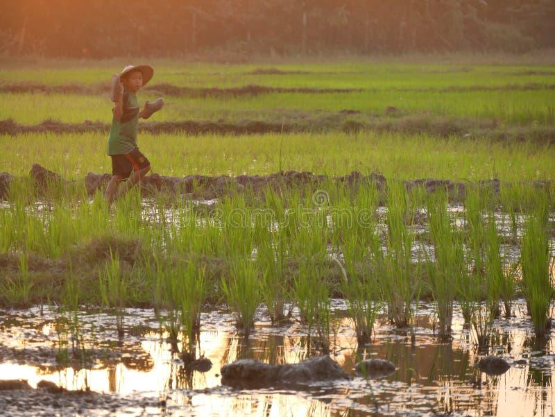 4 de febrero de 2017, Hpa-an Myanmar - throu que camina del muchacho asiático joven fotos de archivo libres de regalías