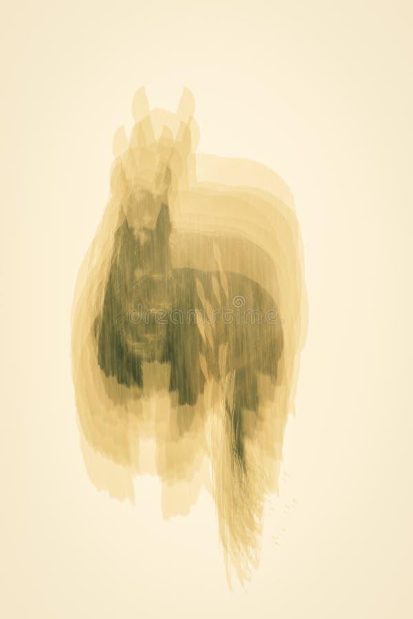 14 DE FEBRERO DE 2019 - FRONTERA LOS E.E.U.U. de COLORADO UTAH - opini?n del extracto del invierno el caballo adentro en tormenta imágenes de archivo libres de regalías