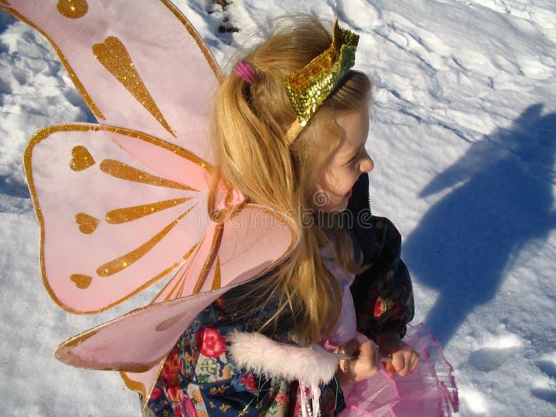 De fee van de sneeuw en haar schaduw stock foto's