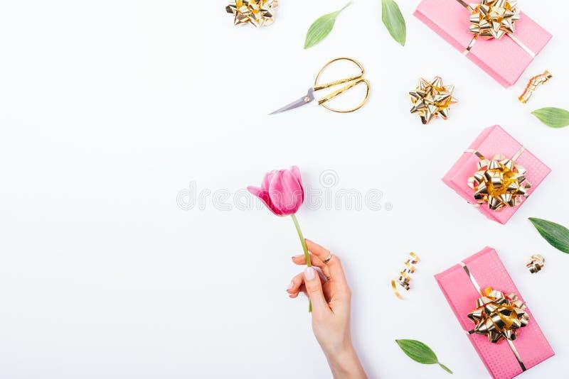 De feestelijke vlakte legt van de de handholding van de regelingsvrouw bloeiende de tulpenbloem royalty-vrije stock foto's